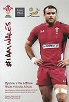 29/11/2014 : Wales v South Africa