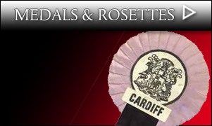 Trophies / Caps / Medals / Pennants / Rosettes